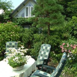 hotel01.jpg - Hotel Villa Hoogduin - Domburg
